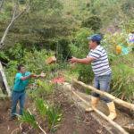 permacultura.xyz construccion de techos de tierra en la vereda Matarredonda, Nariño, Colombia