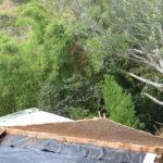 permacultura.xyz construccion de techos de tierra en la vereda Matarredonda, Nariño, Colombia poniendo tierra cernida para formar la cubierta. Panorámica techos en tierra